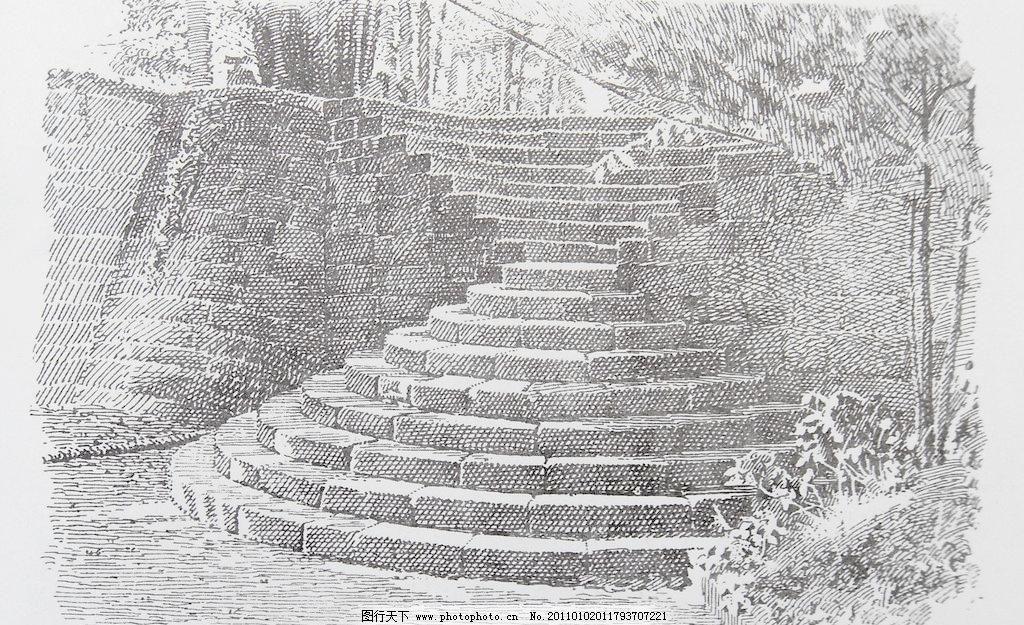 钢笔画 草丛 风景画 黑白画 绘画书法 阶梯 钢笔画图片设计素材