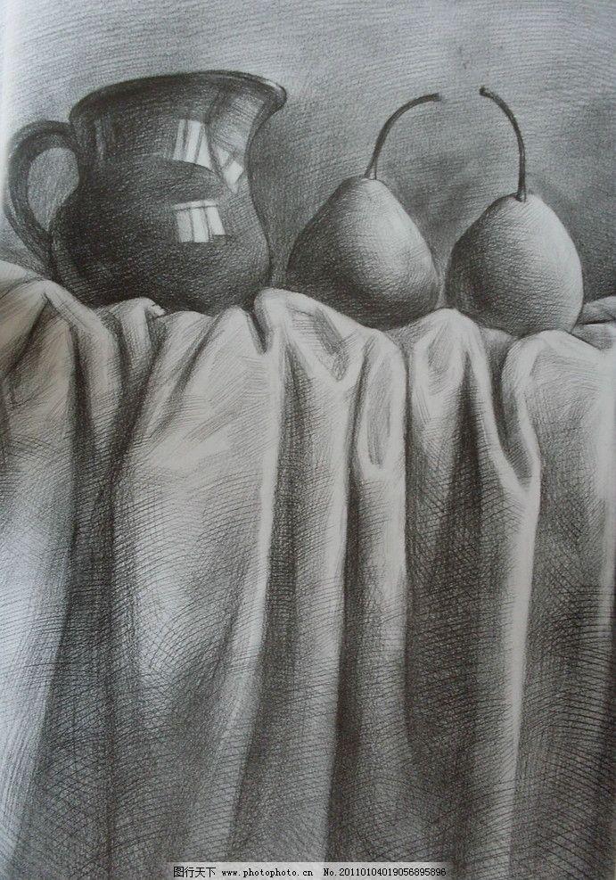 梨子的结构图片素描