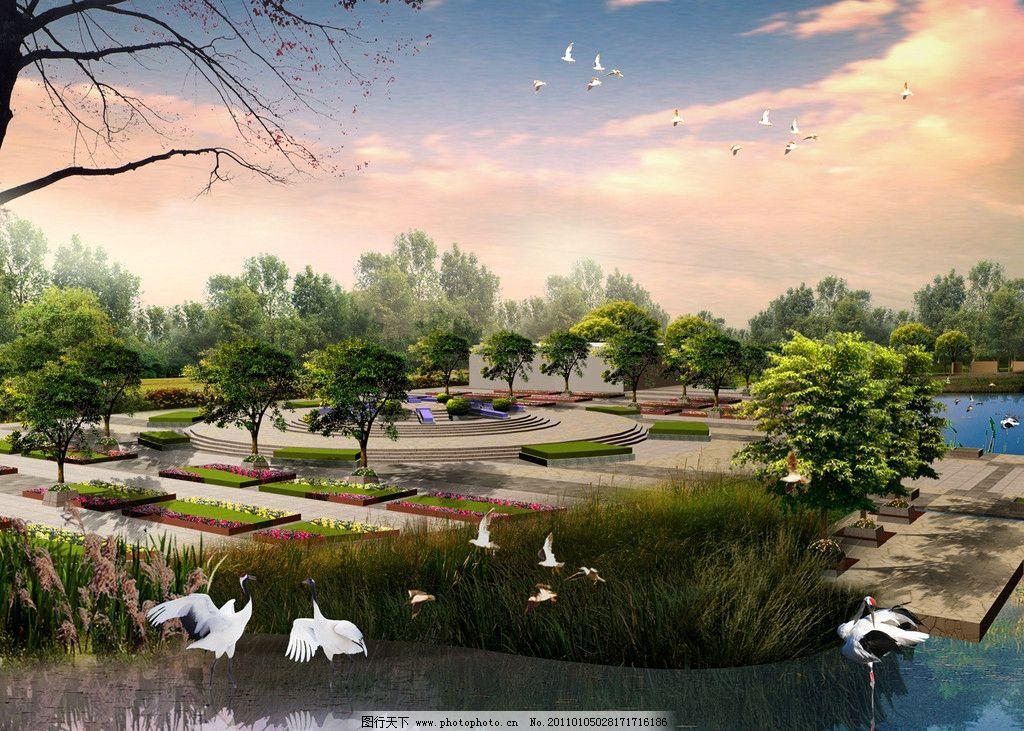 花卉广场 效果图 环境 室外设计 公园园林效果图 花草 白鹭 飞鸟