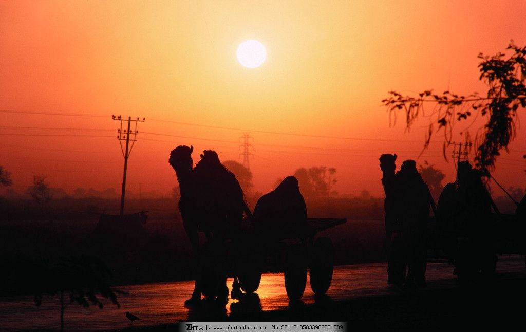 夕阳中的背影图片