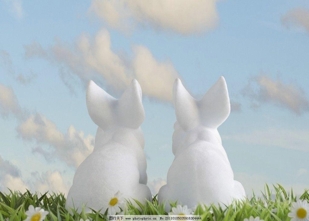 摄影图库 生物世界 家禽家畜  2只小白兔 天空 可爱的 毛绒绒 2只兔子