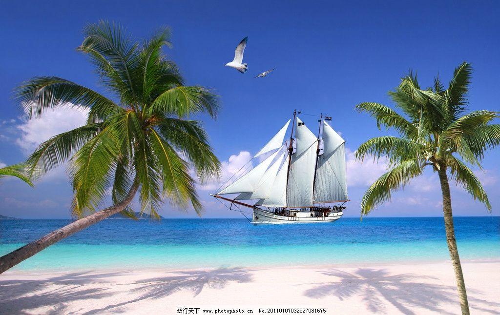 帆船 大海 椰子 海鸟 沙滩