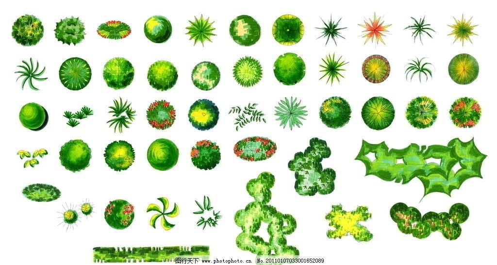 植物立面图 彩平图 树 规划平面 水彩 规划平面图 源文件