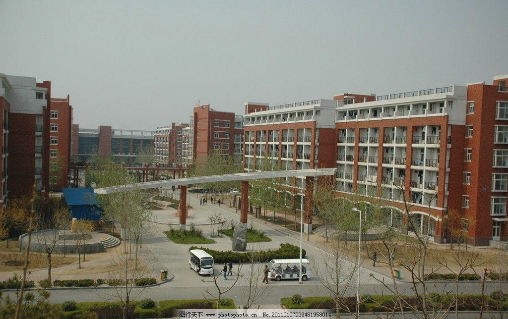 郑州大学 郑州大学校园 大学校园 郑大新校区 路 树木 建筑 宿舍楼图片