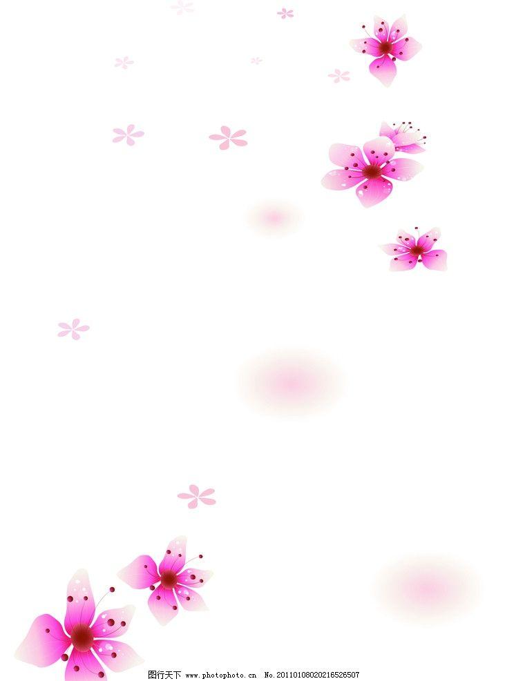 淡雅 淡雅花 小花 紫色花