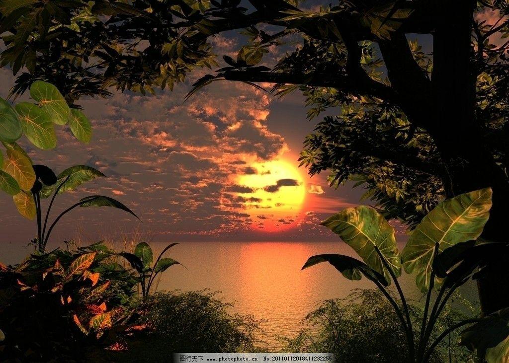 梦幻背景 大自然 唯美 花朵 草地 夜色 大海 太阳 动漫动画