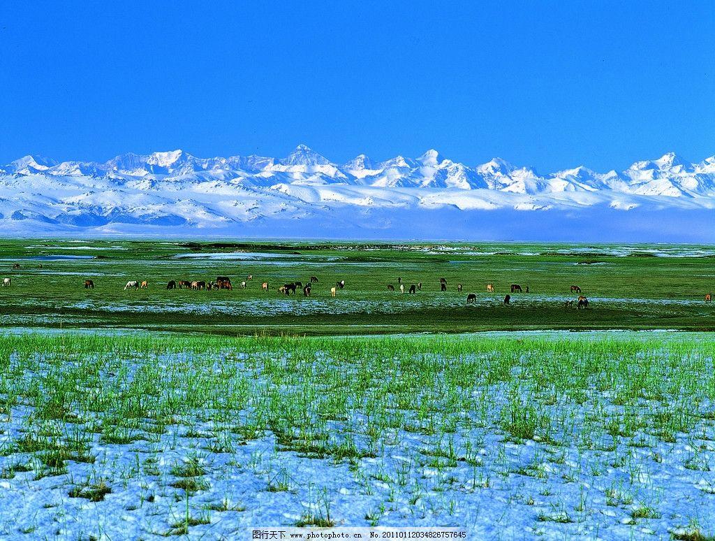 新疆冬景 山 雪 阳光 云 动物 河水 新疆风光 旅游摄影 国内旅游 中国风光 摄影图库 自然风景 自然景观 摄影 350DPI JPG