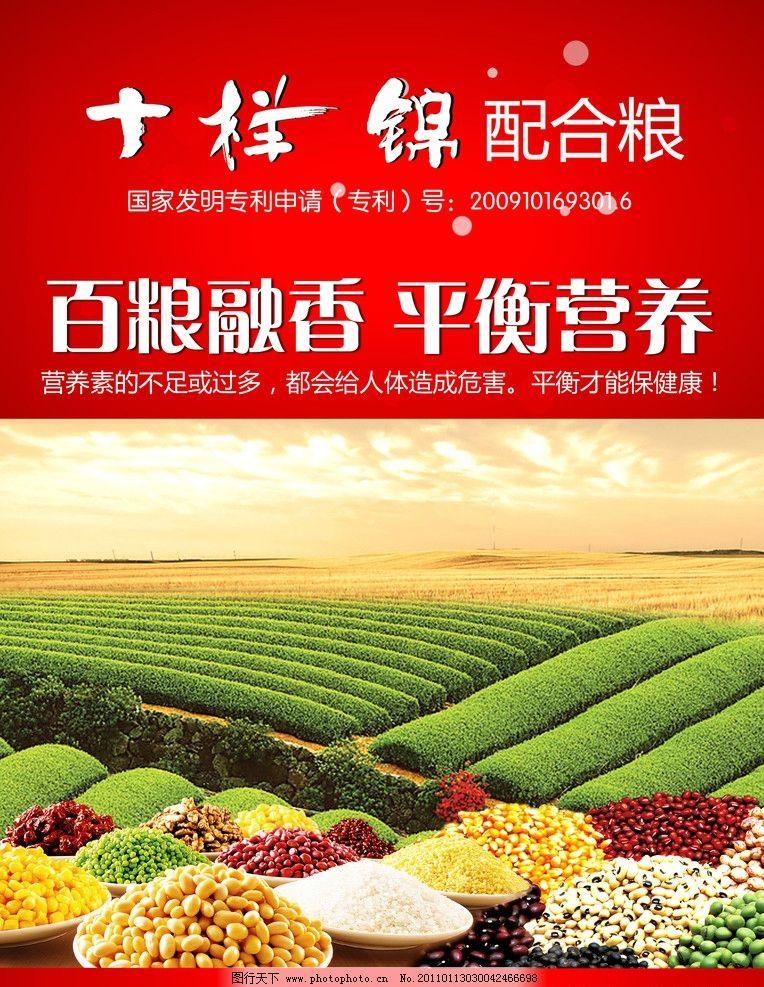 海报 宣传海报 田野 粮食 杂粮 红色背景 光点 血红 深红 五谷杂粮
