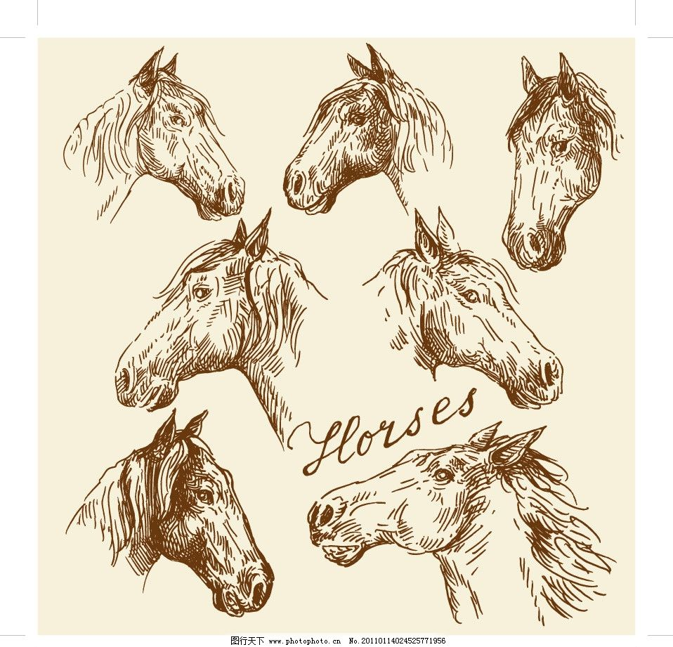 手绘马头图片