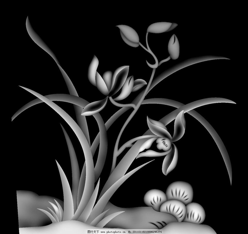 兰花 灰度/兰花灰度图片