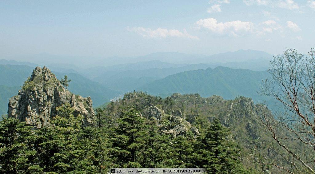 牛背梁森林公园 牛背梁国家森林公园 石林 远山 层叠的山峦 松树 自然