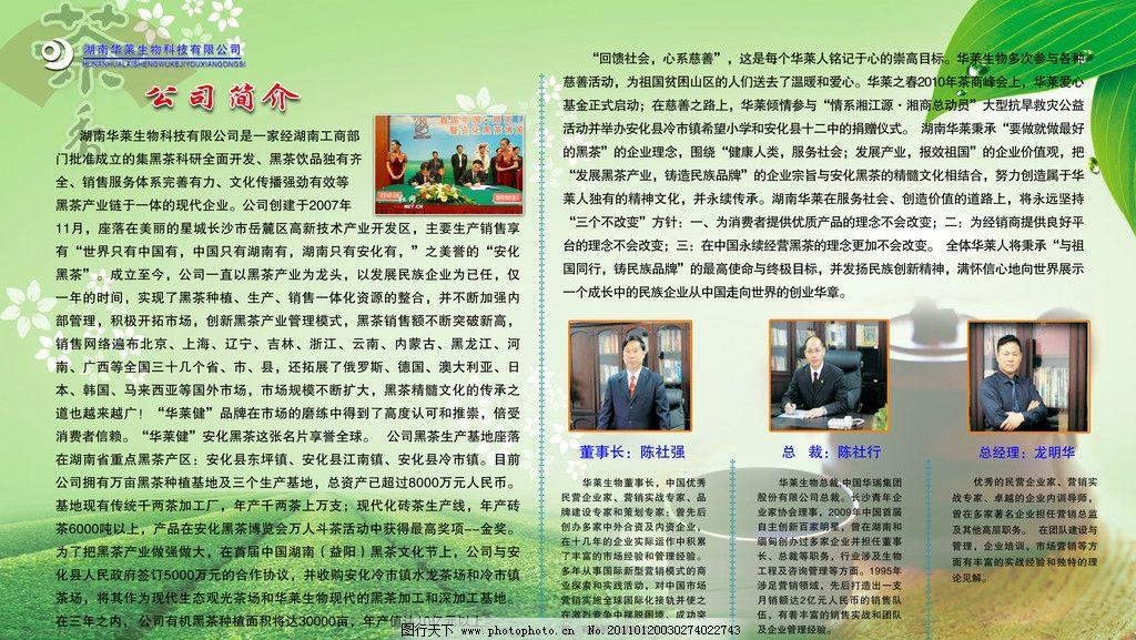 茶叶 黑茶 茶壶 华莱公司 绿色背景 宣传展板 展板模板 广告设计模板