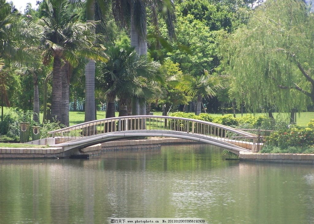 小桥流水 树木 拱桥 湖水 倒影 阳光 柳树 花 国内旅游 旅游摄影 摄影
