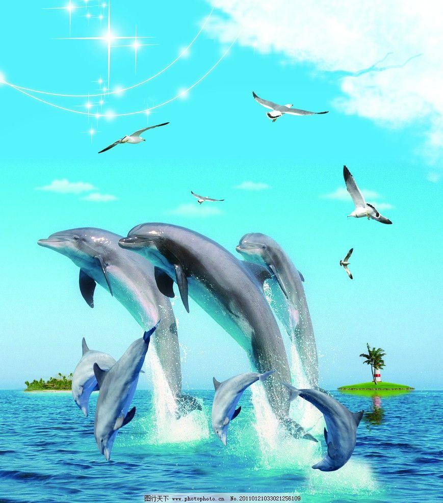 雀跃的海豚 海浪 小岛 海鸥 星光 白云 椰树 源文件