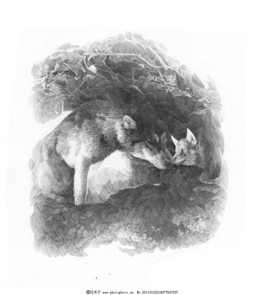 老外 线描 线稿 线条 大师作品 大师范画 范画 狼 动物 经典素描作品