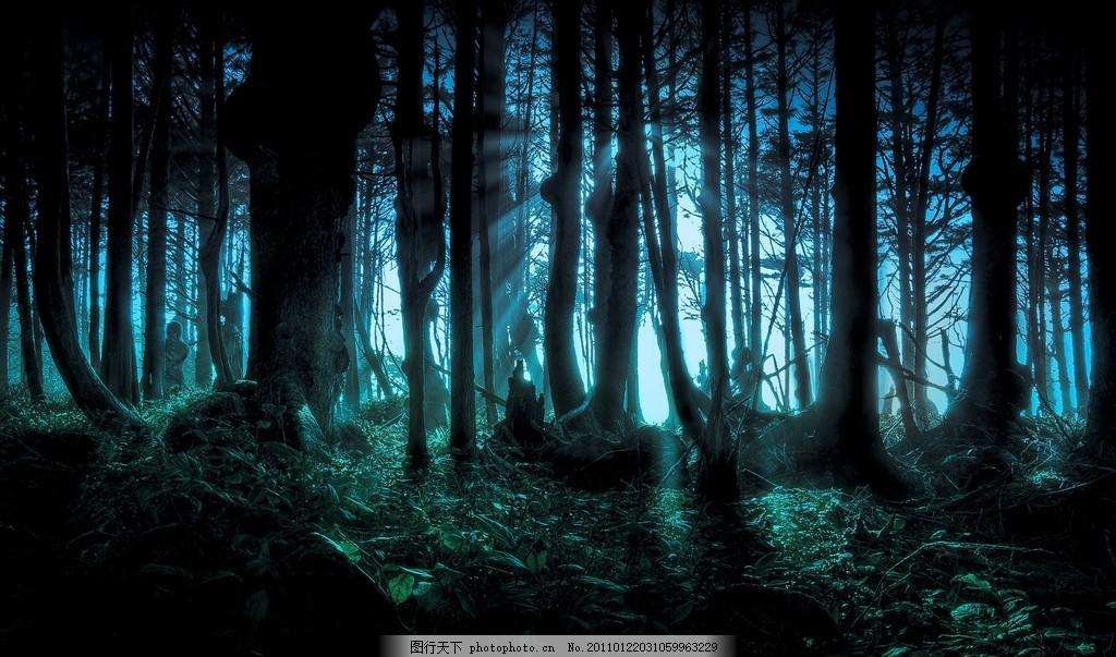 万圣节桌面壁纸 黑夜 森林 树木 电脑桌面 丛林 恐怖 黑暗