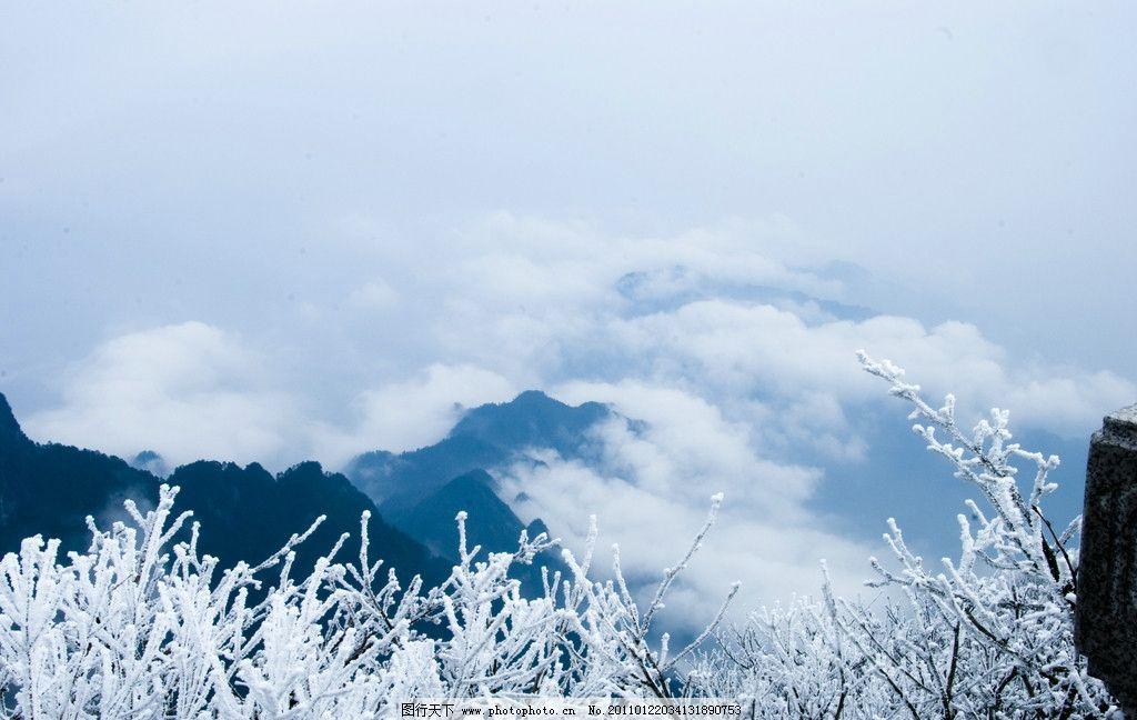 初冬的峨眉山 初冬 峨眉山 雪景 雪山 雪松 云雾 自然风景 旅游摄影
