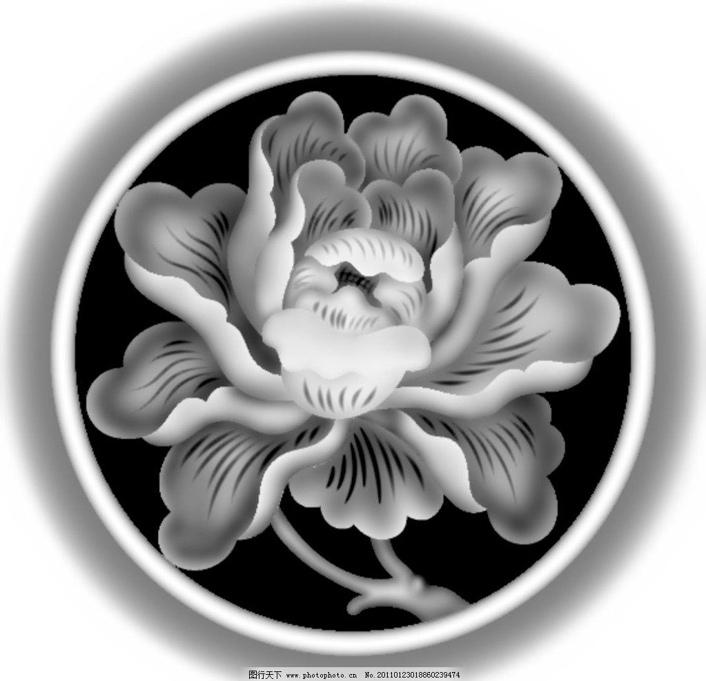 花草/花草灰度图图片