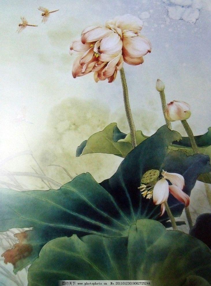 荷叶 荷花 中国工笔画 美术 国画 水墨画 彩墨画 荷花国画专辑 绘画