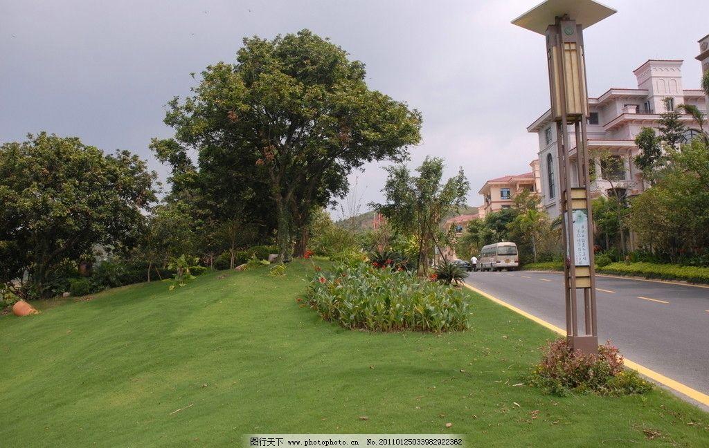 绿化 聚龙小镇 黄线 过道 道路 马路 树木 天空 房子 路灯 楼房 屋子
