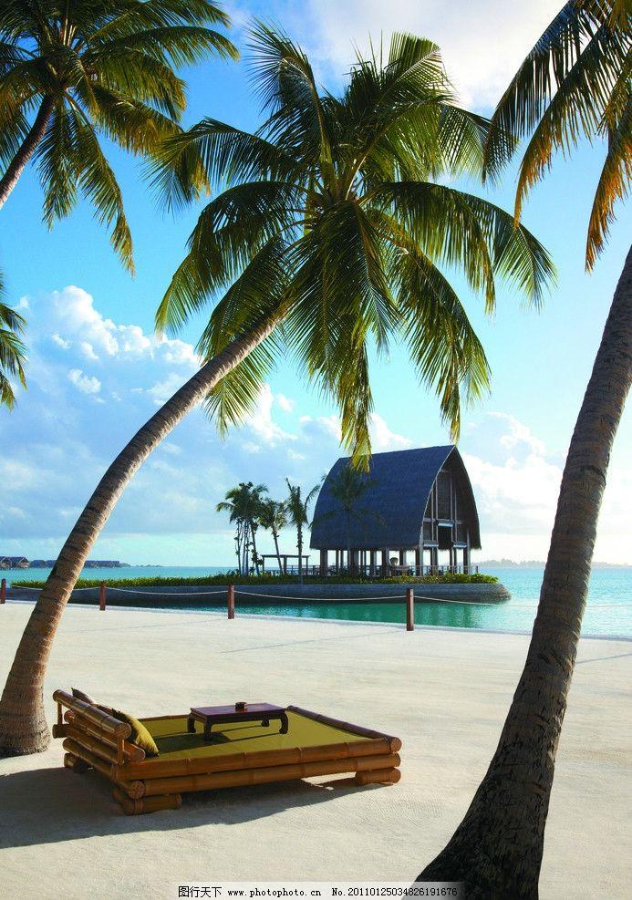 景观设计 景观 植物 椰子树 海景 大海 沙滩 海滩 岛屿 三亚 海南 五