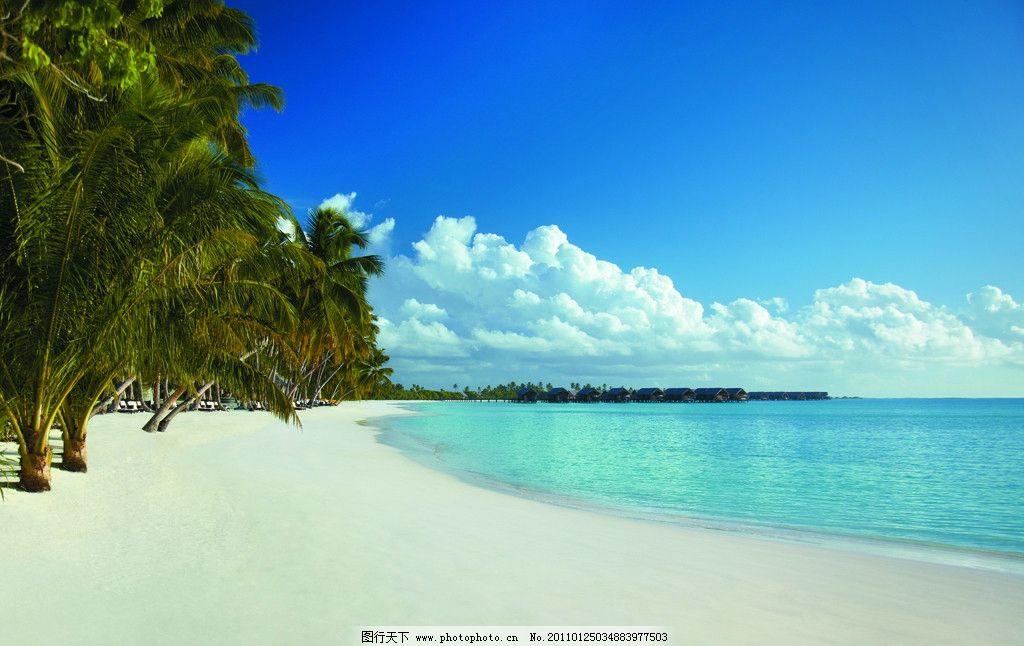 自然风景 景观设计 景观 植物 椰子树 海景 大海 沙滩 海滩 岛屿 三亚