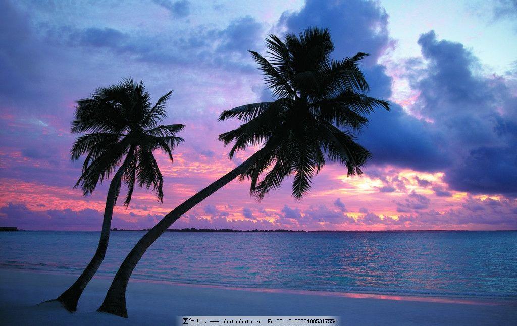 自然景观 景观设计 景观 植物 椰子树 海景 大海 傍晚 黄昏 沙滩 海滩