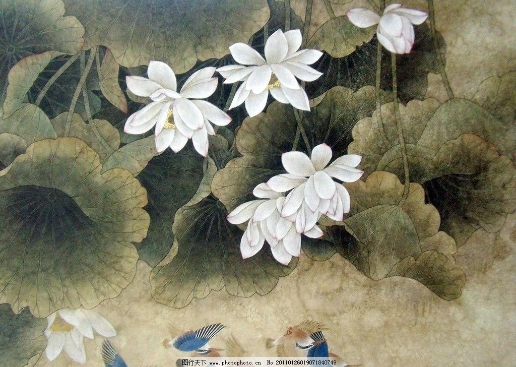 荷叶 荷花 荷塘 夏荷 水鸟 中国工笔画 美术国画 水墨画 彩墨画 荷花