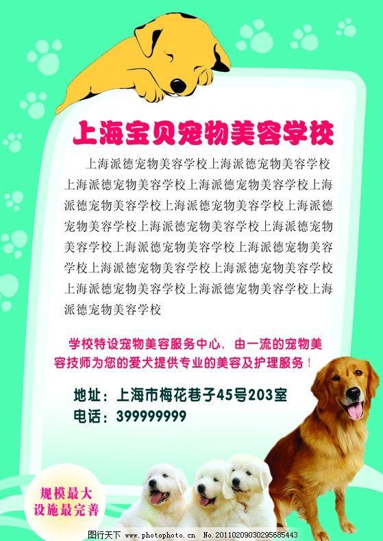 宠物学校 小狗 狗脚印 宠物店 dm宣传单 广告设计模板 源文件 350dpi