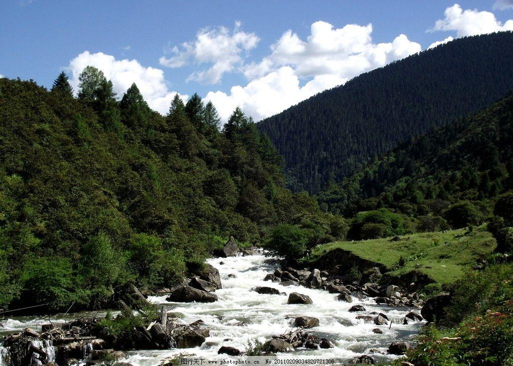 林芝温泉河 西藏 河流 森林 山 自然风景 自然景观 摄影