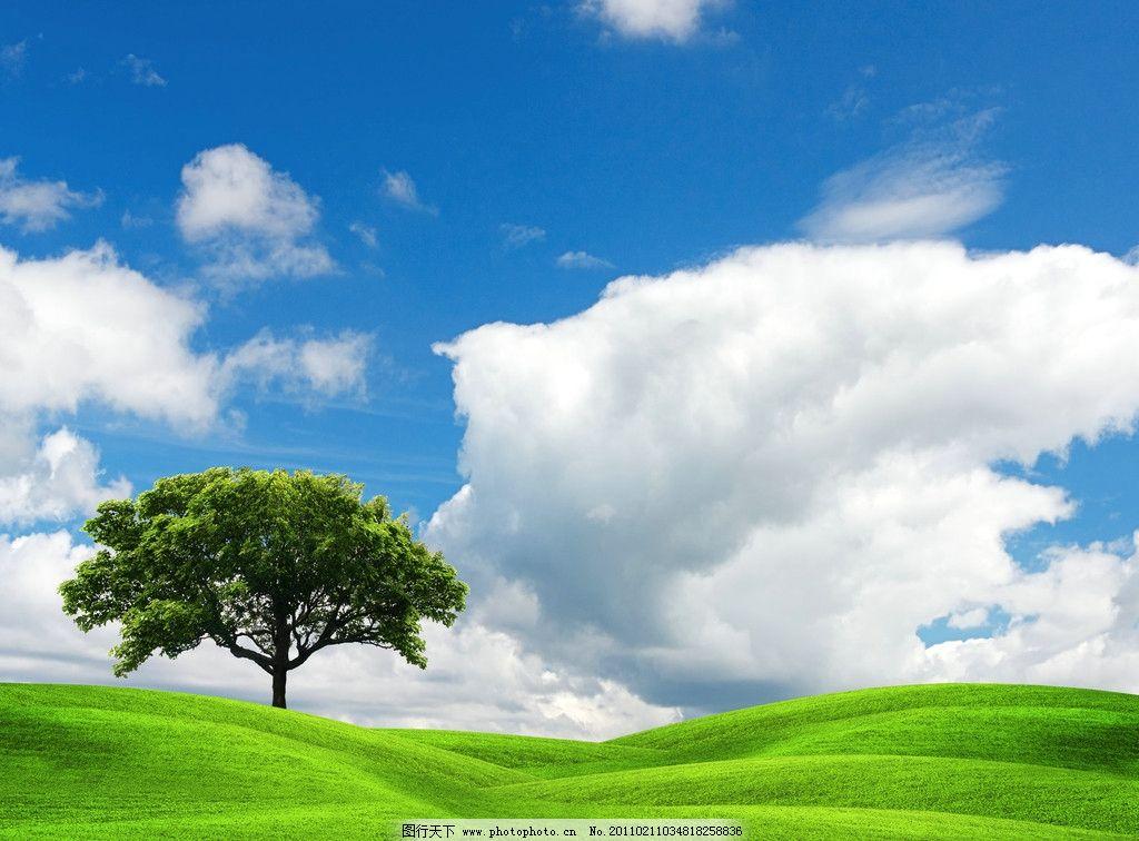 自然风景  高清蓝天白云草地 蓝天 白云 草地 树木 草丛 花草 草原