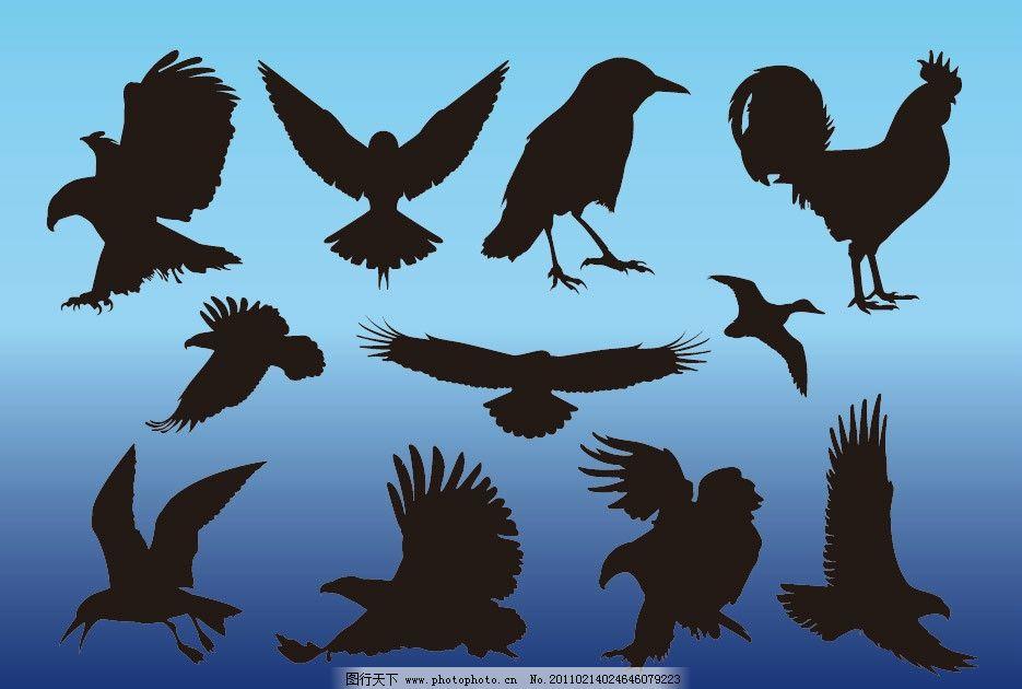 有羽毛翅膀的动物剪影图片