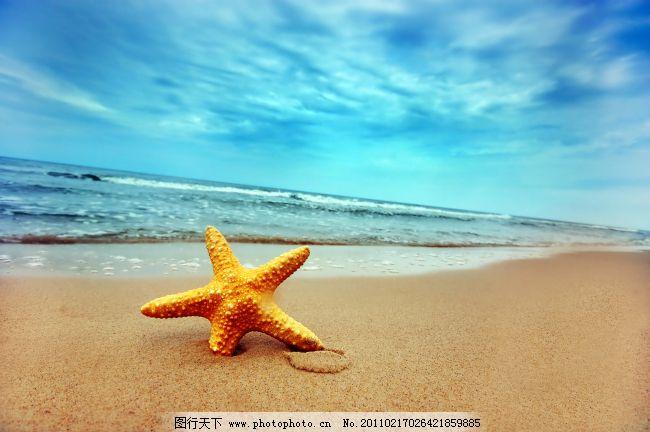 海边海星 海边海星免费下载 大海 风景 海景 蓝色 图片素材 风景生活