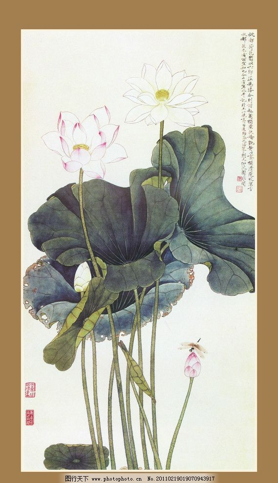 莲花 荷花 蜻蜓 水墨画 国画 艺术 古画 绘画书法 文化艺术 设计 100