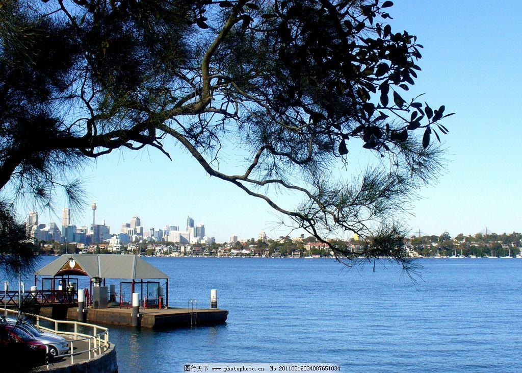 河上风景 悉尼 澳大利亚 蓝天 对岸建筑 绿树 摄影 风光 海湾