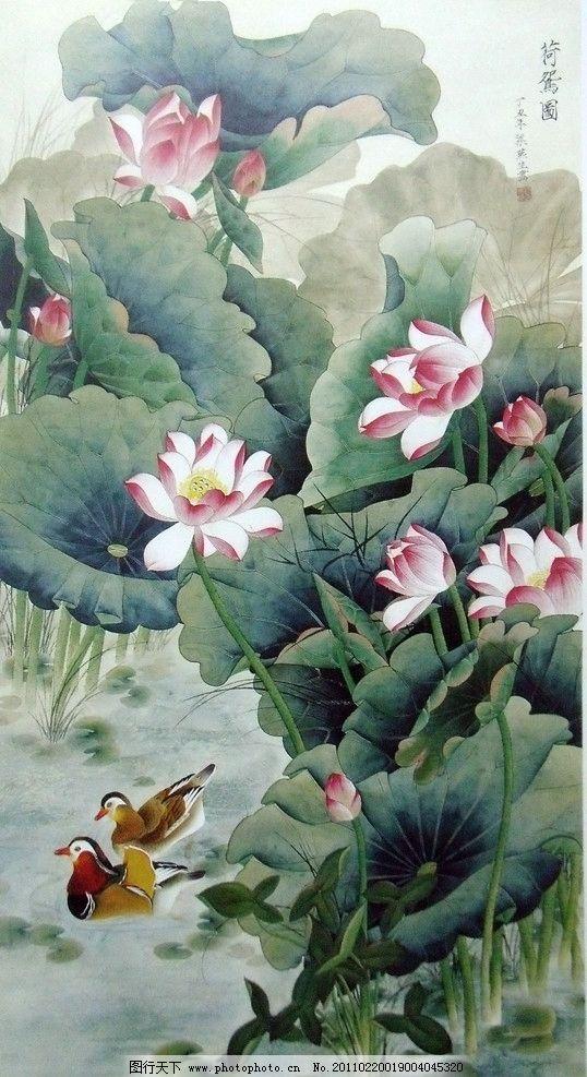 优质荷花素材 野鸭子 中国工笔画 美术国画 水墨画 彩墨画 荷花国画