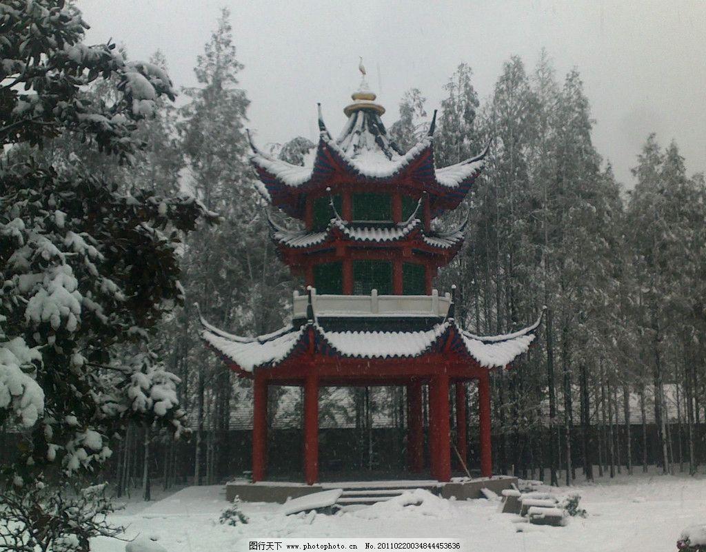 南京/南京的雪图片