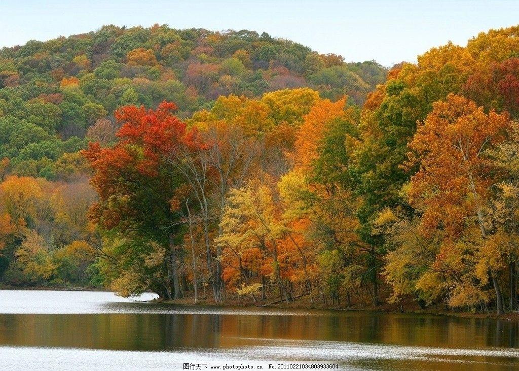 湖面风景 湖面 湖 森林 树林 远山 秋天 秋季 自然风景 自然景观 摄影