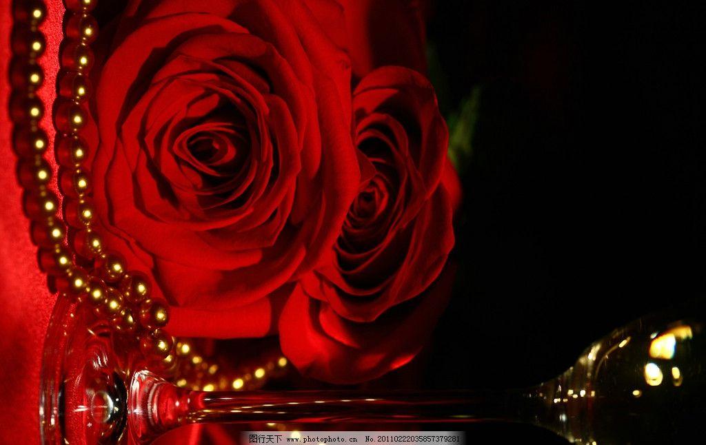 生物世界 树木树叶  玫瑰 玫瑰花 酒杯 高脚杯 花瓣 节日庆祝 红玫瑰
