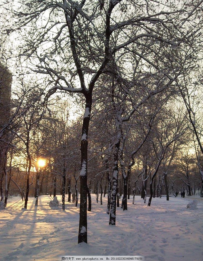 冬天雪景 冬天 日落 雪景 树木 自然风景 自然景观 摄影 72dpi jpg