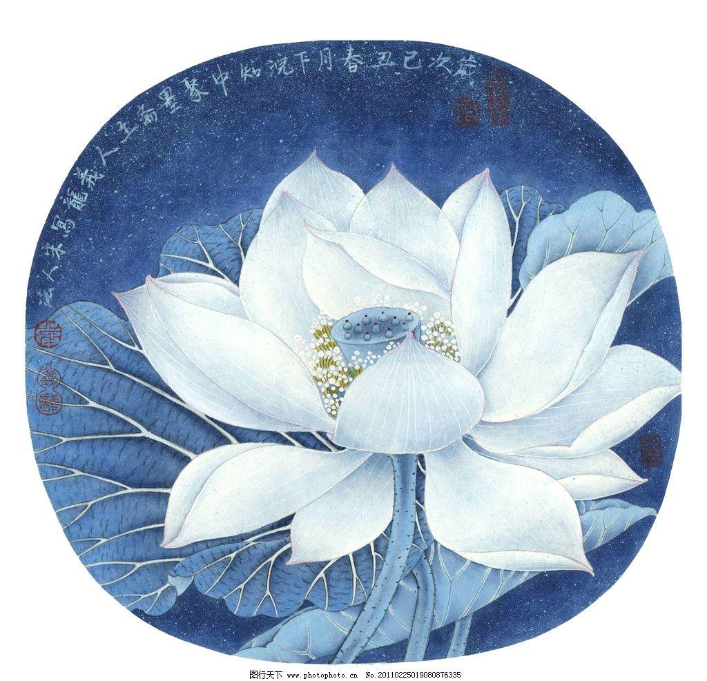 白莲花 美术 中国画 水墨画 彩墨画 花卉 莲花 莲叶 盛开 书法 印章