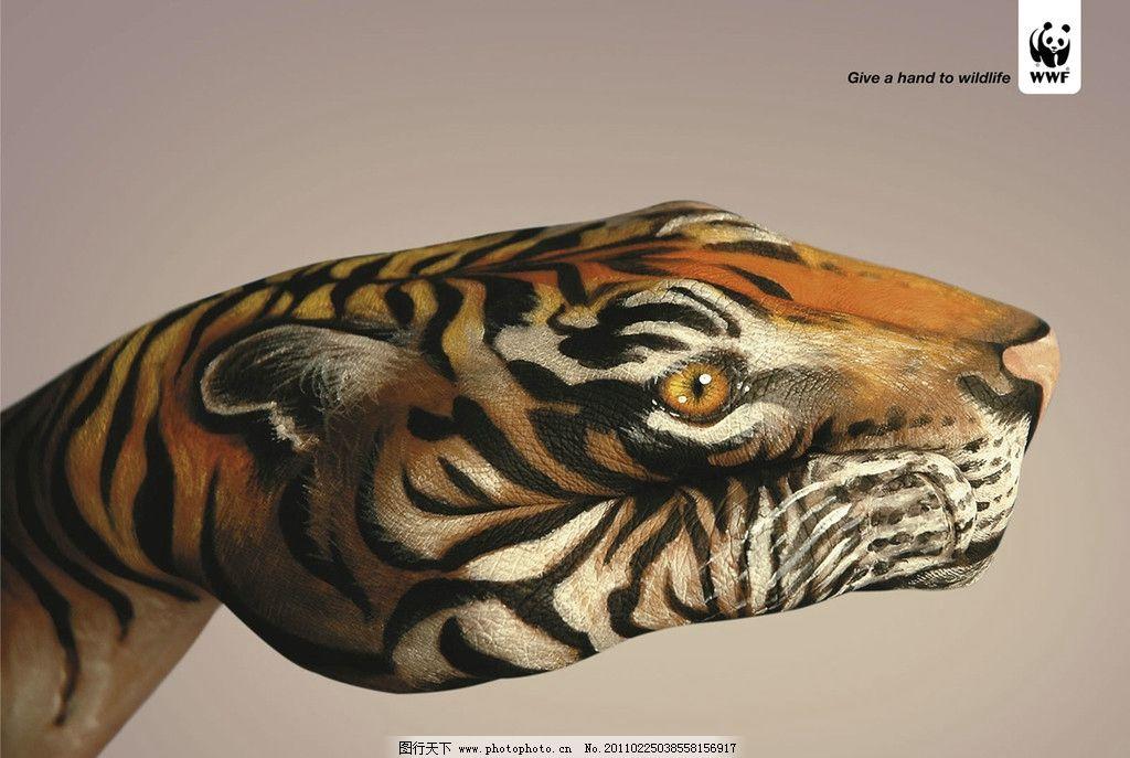 老虎 彩绘 动物 手 手指 摄影