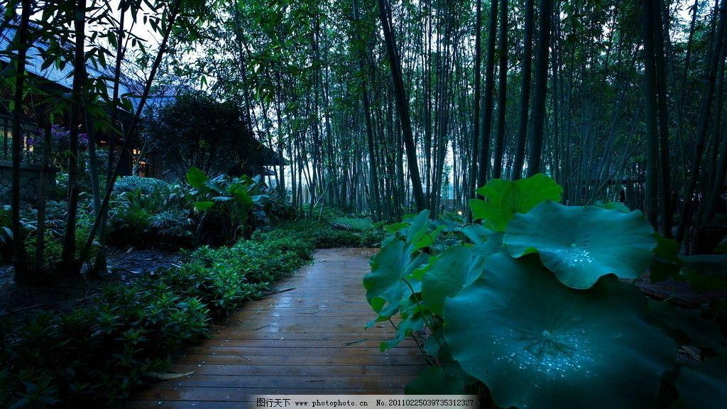 园林景观 铺装 欧式 夜景 别墅花园 园林建筑 建筑园林 摄影 其他 72