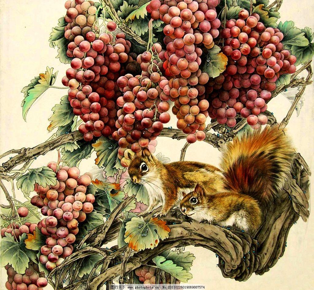 松鼠葡萄图 美术 绘画 中国画 工笔重彩画 动物 松鼠 水果 葡萄 红