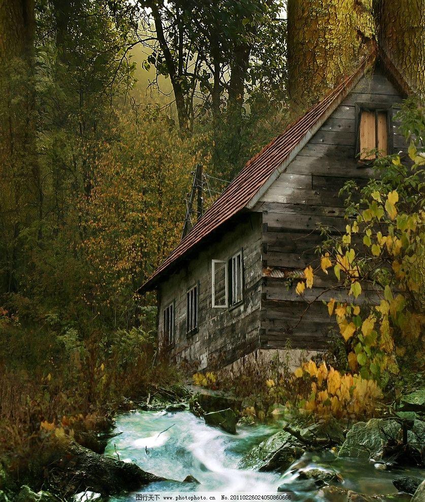 森林中的小木屋 设计图片图片