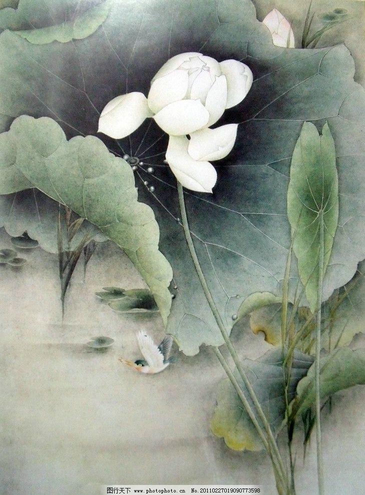 初稿上色素材 中国工笔画 美术国画 水墨画 彩墨画 荷花国画专辑 绘画