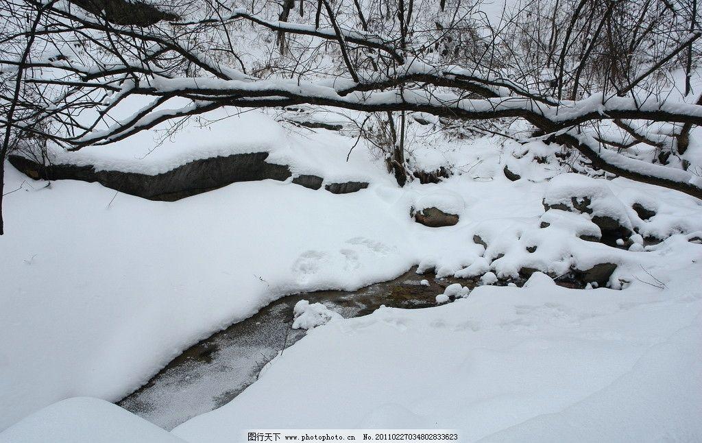 冬雪 自然风光 雪景 雪韵 大雪 自然风景 自然景观 摄影 72dpi jpg