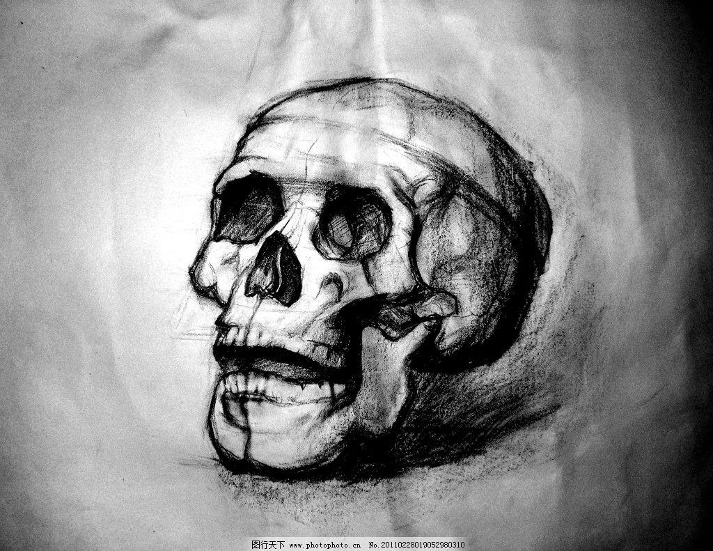 骷髅素描 骷髅 头骨 结构素描 素描 铅笔画 石膏 人体 明暗素描 美术