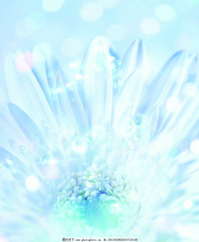 心蓝 花 淡蓝冰花 花边花纹 底纹边框 设计 27dpi jpg