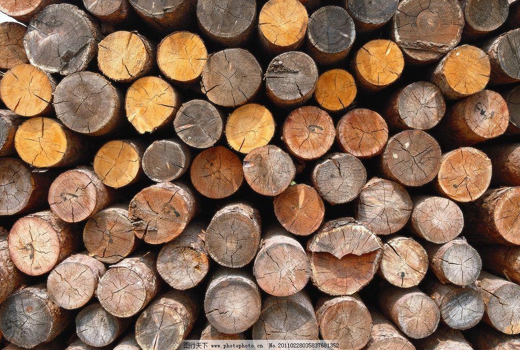 木堆 木头 木块 木条 背景 摄影 生物世界诶 树木350dpi jpg